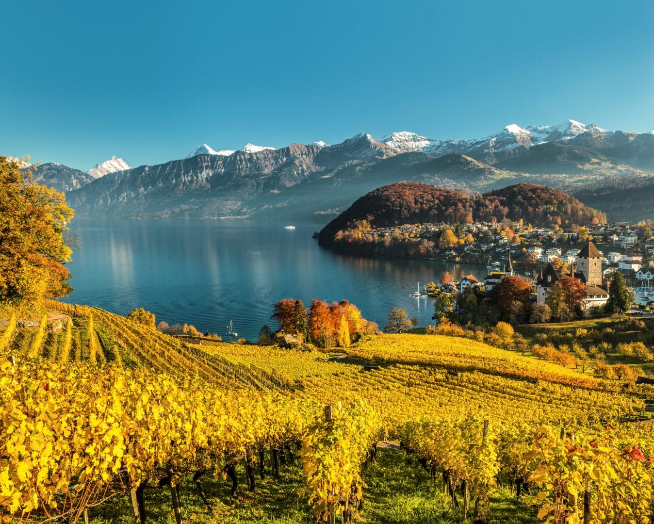 In Svizzera per l enoturismo, l'autunno da bere