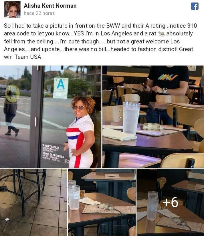 Ratti  volanti  a Los Angeles? Uno precipita sul tavolo di un ristorante