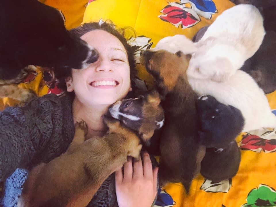 Ad Agrigento  i bambini  di Chiara: nell Oasi Ohana 70 cani strappati dalla strada