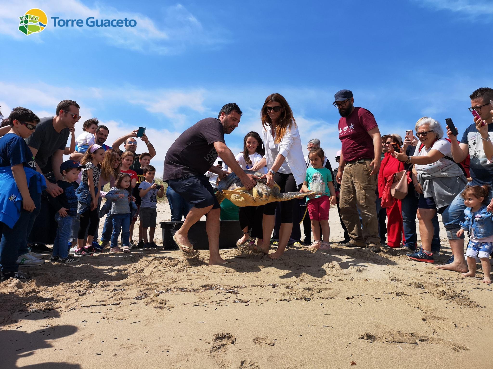 Brindisi, tartaruga salvata da una bimba: curata e liberata