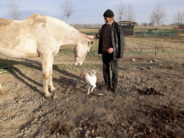 Mantova, la nuova vita del clochard Francesco e del suo cagnolino Tommaso