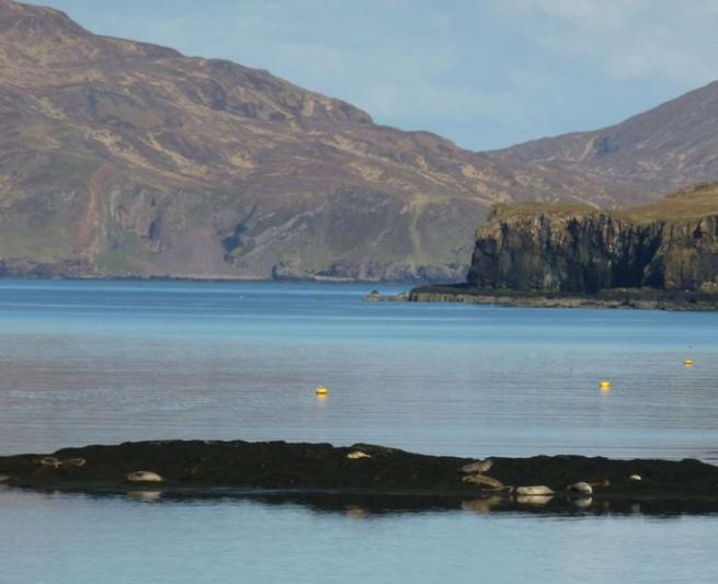Canna, isoletta scozzese sotto shock Primo furto negli ultimi 50 anni