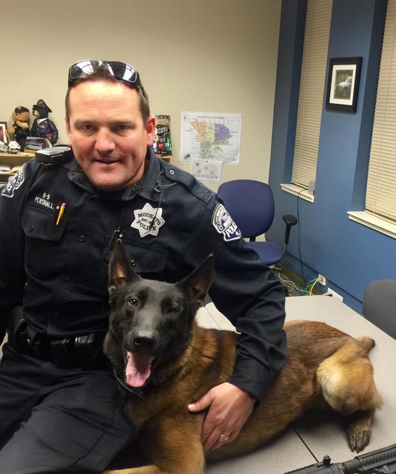 California, cane addestrato rimane orfano del suo poliziotto: affidato alla famiglia