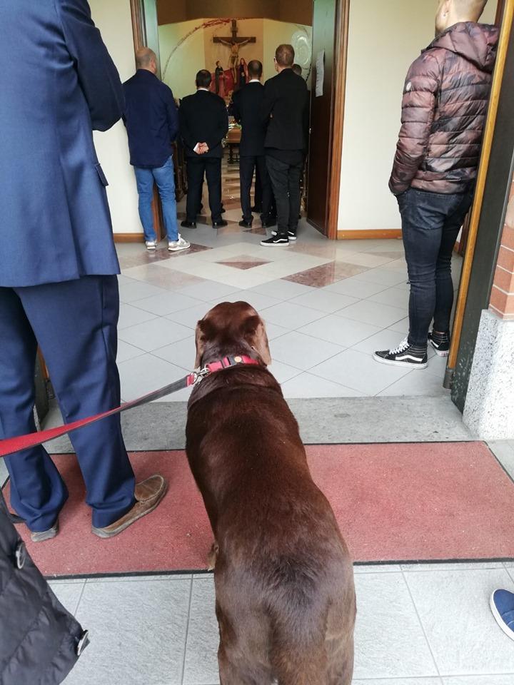 Torino, il cane non può assistere in chiesa al funerale dell anziano padrone: scatta la protesta