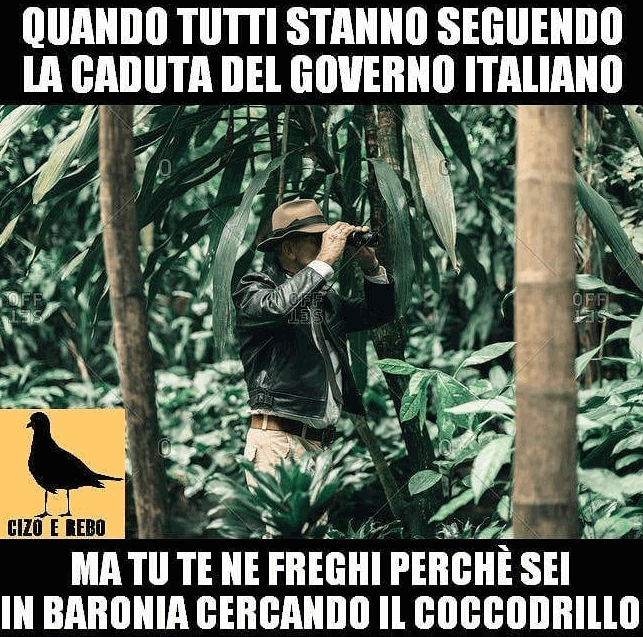 Ironia social sul caimano scomparso in Sardegna