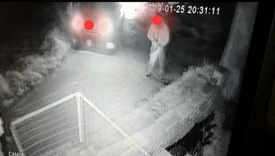 Lecce, abbandona cane e gatto in campagna ma viene incastrato da una telecamera
