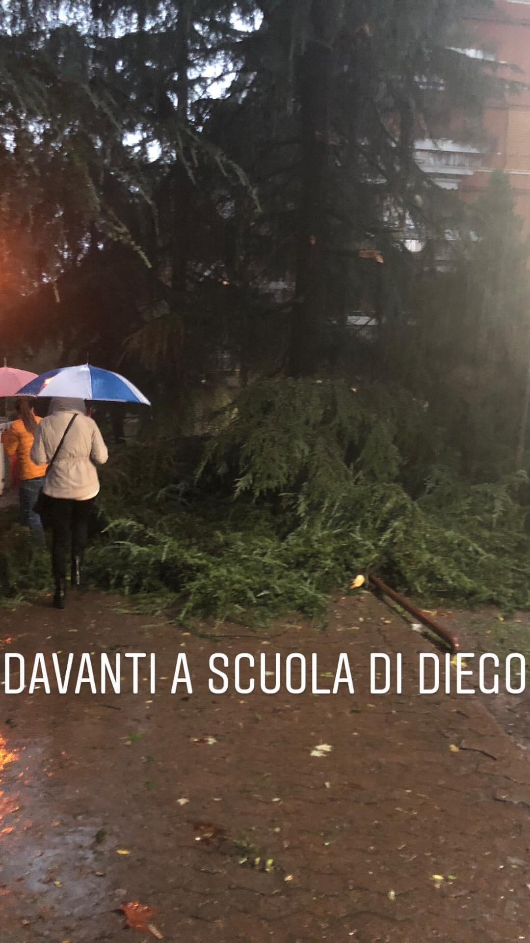 Benedetta Parodi vittima del maltempo: un tronco sul suo posto auto