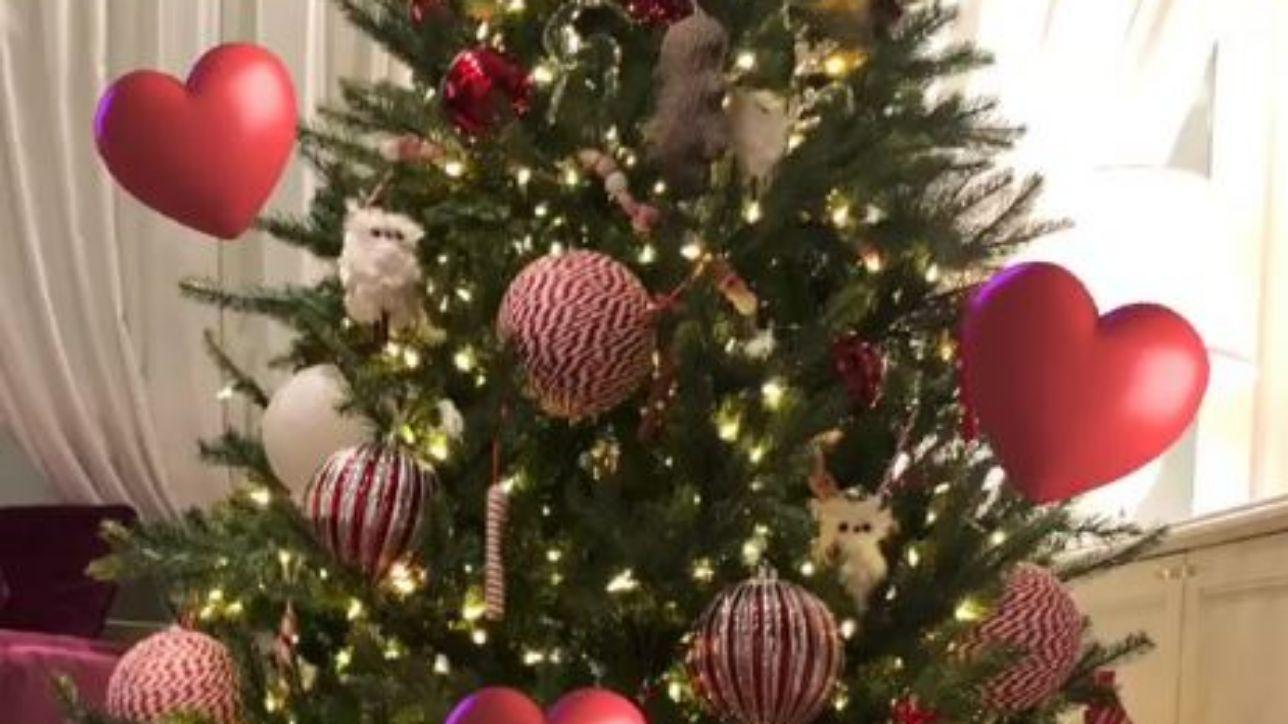 Michelle Hunziker ha già fatto l'albero di Natale