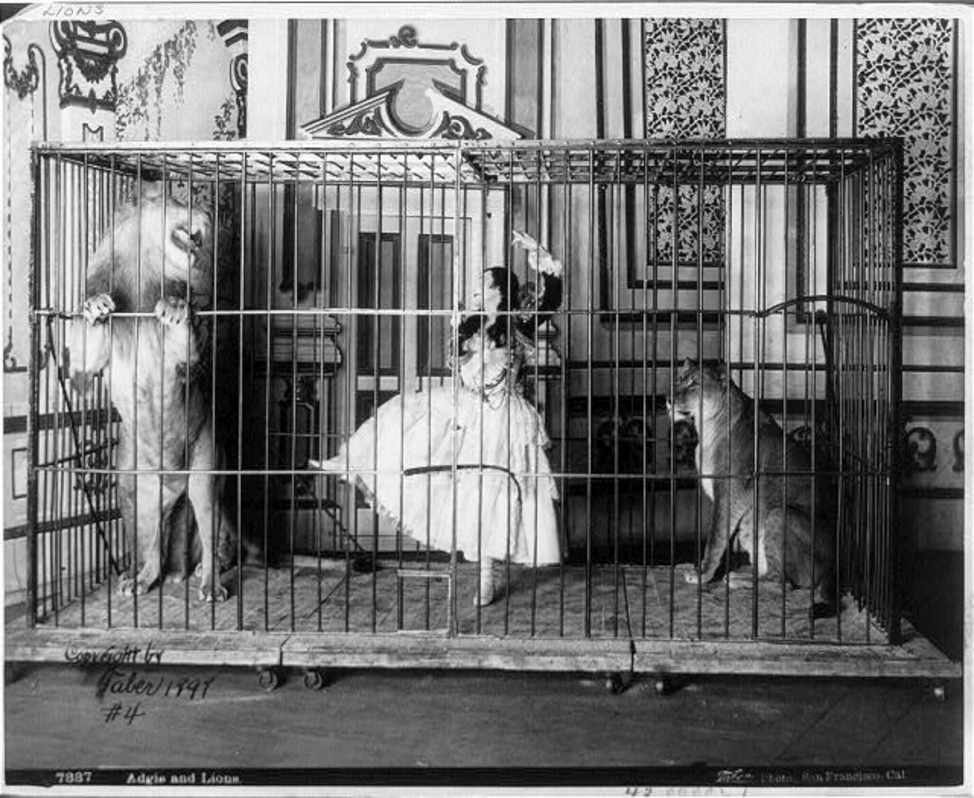 Circo degli animali, le immagini storiche di fine  800