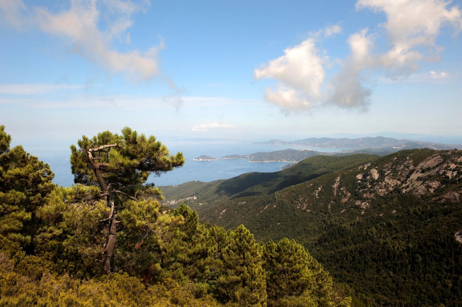 Lontana dal mondo e a due passi da tutto: l Elba