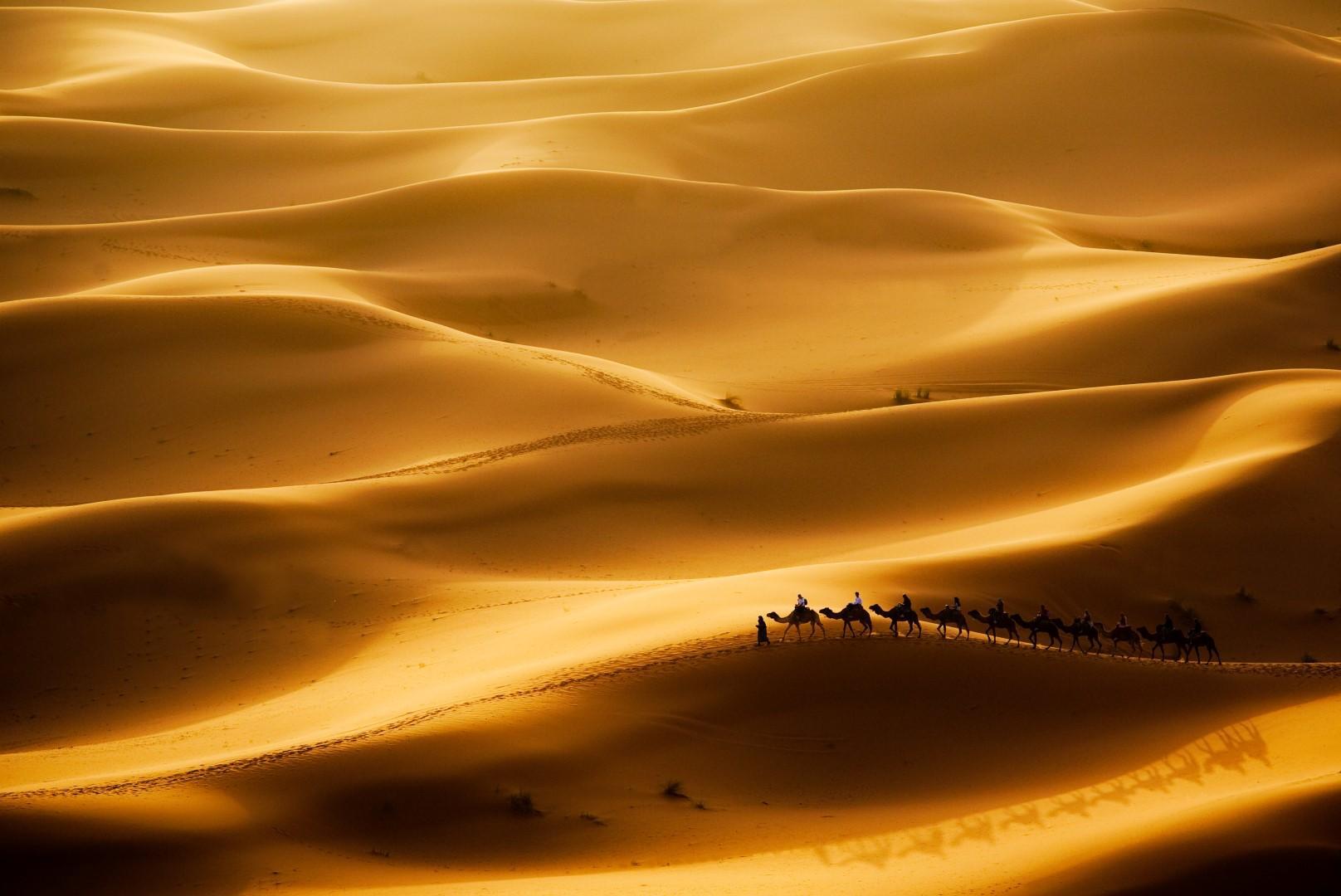I deserti più affascinanti del mondo