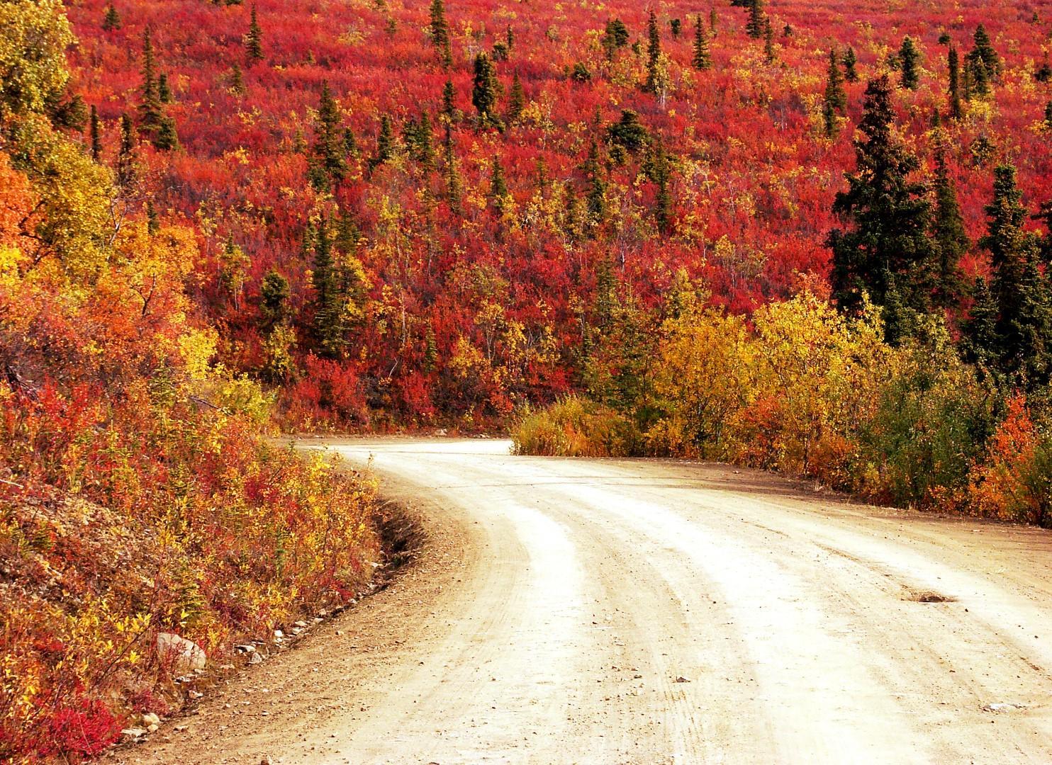 Foliage: i luoghi più belli del mondo per ammirare l'autunno