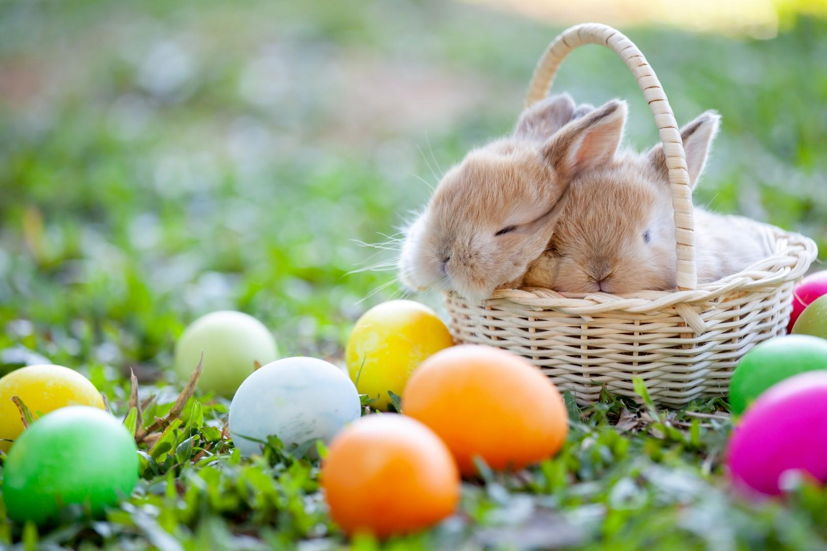 Le tradizioni di Pasqua più dolci e curiose