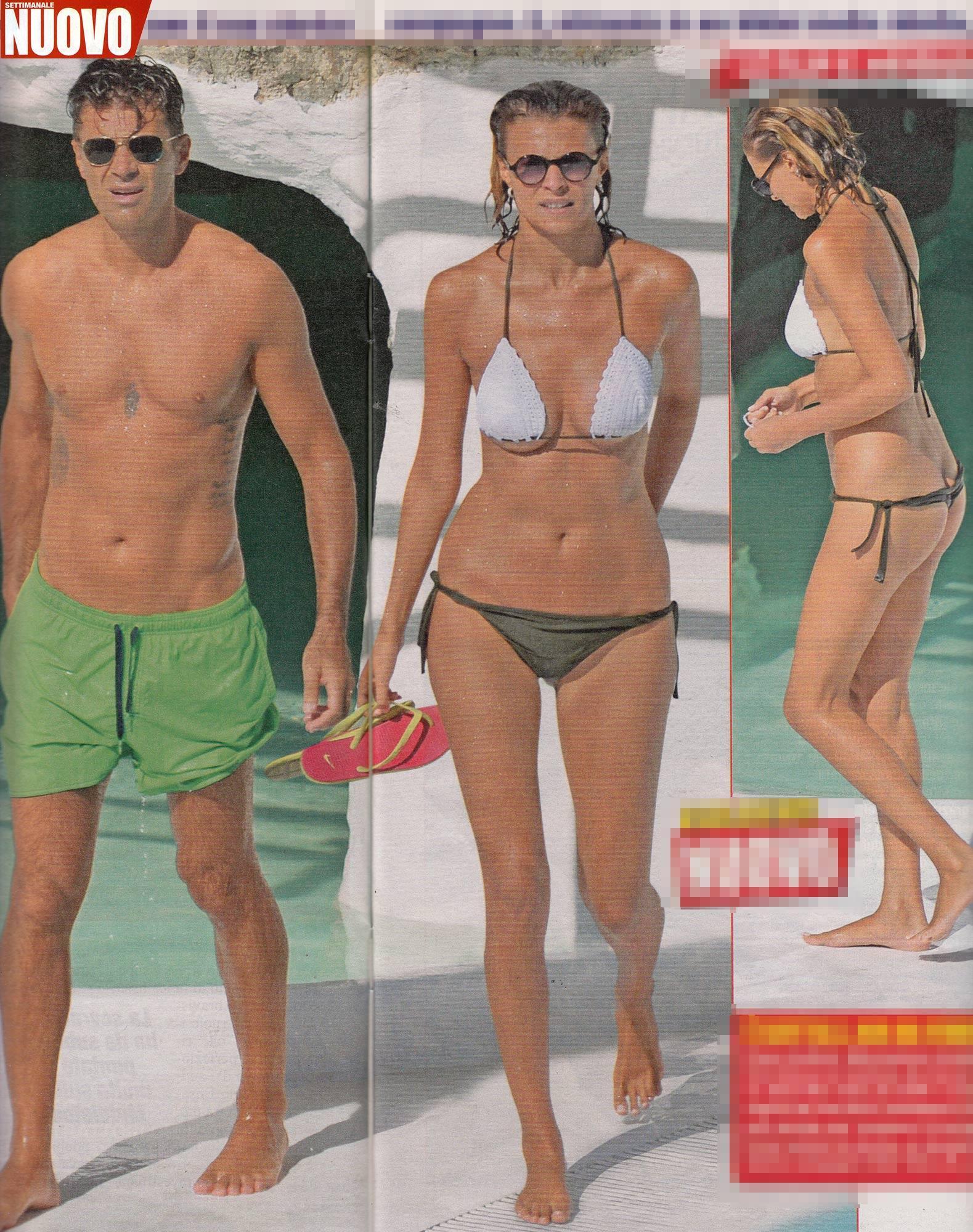 Grande grasso Harry figa