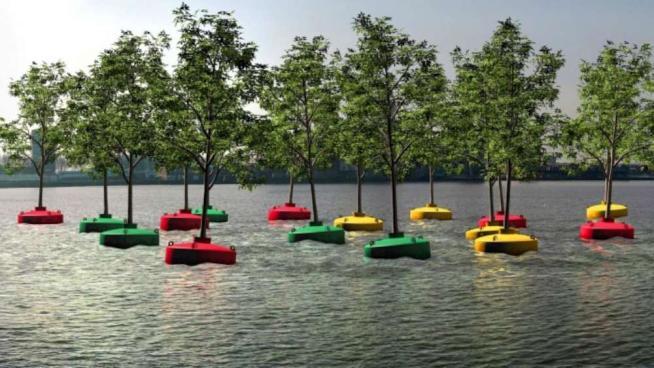 Un mare di alberi, a Rotterdam arriva la prima foresta galleggiante del mondo