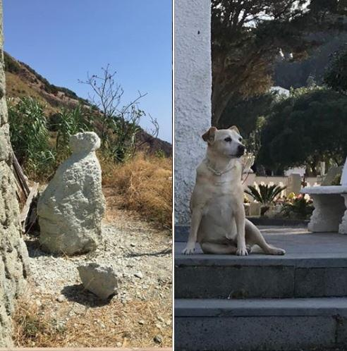 Ischia, in costruzione la statua per Nicoletta: la cagnolina che vegliava la tomba del padrone