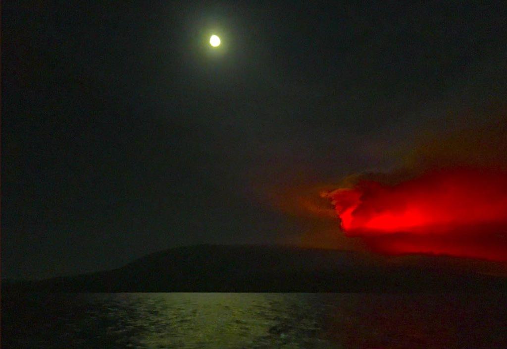 Galapagos, dopo 8 anni si risveglia il vulcano La Cumbre