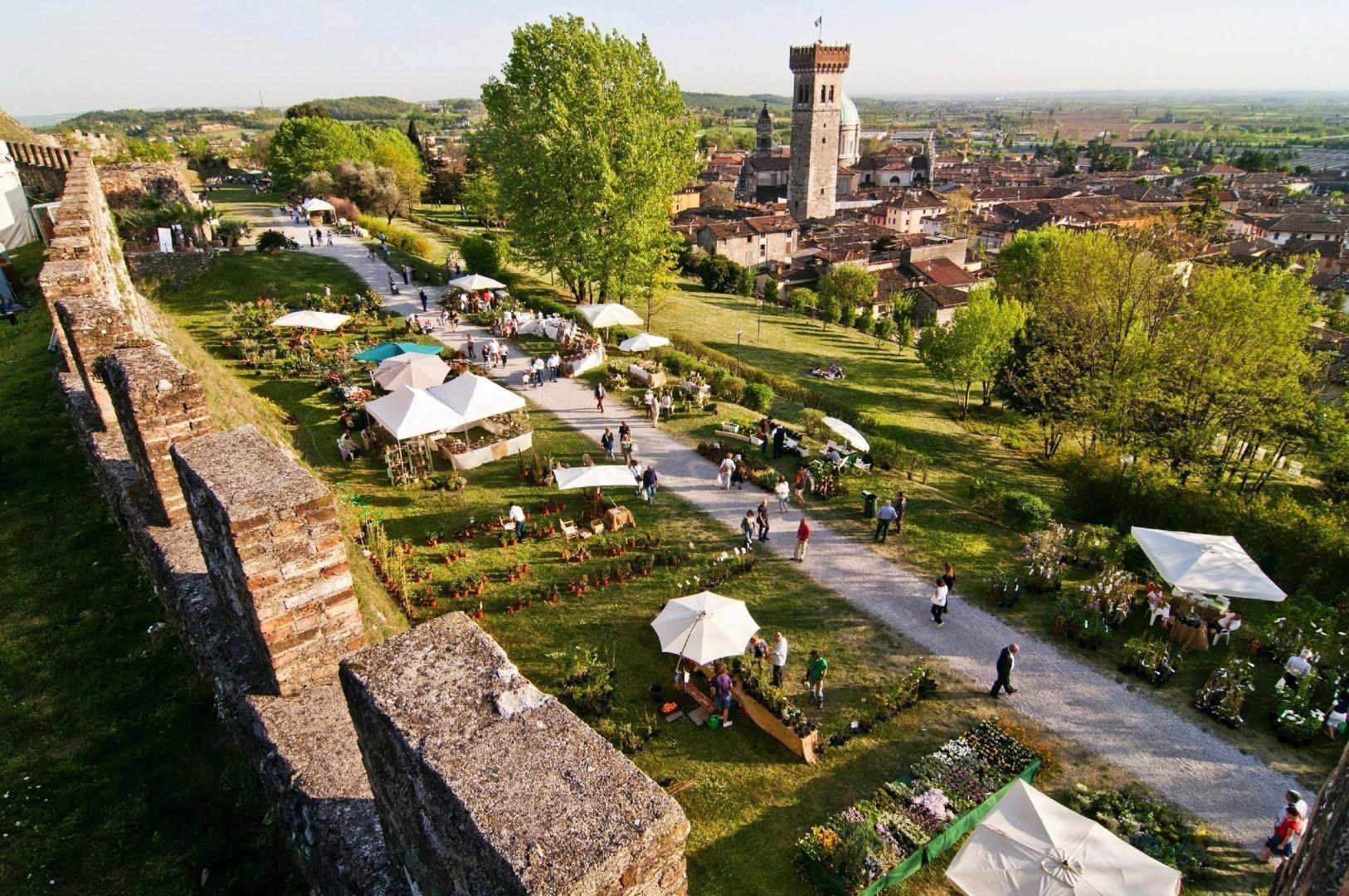 Passione giardinaggio: Fiori nella Rocca a Lonato del Garda