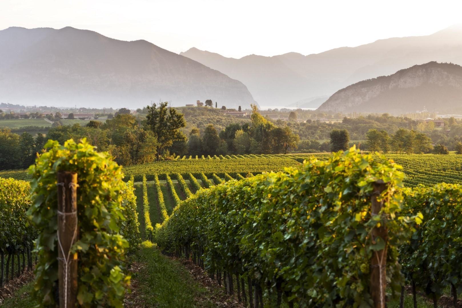 Franciacorta, torna il Festival per i wineefood lovers