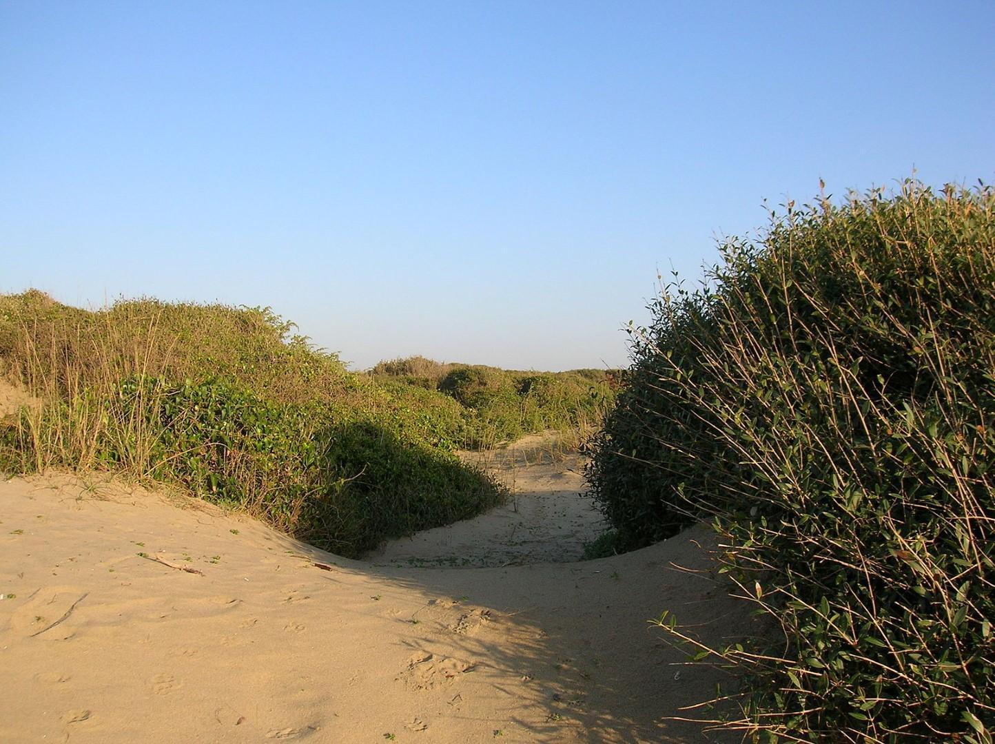 Le dune di casa nostra: l'Europa che non ti aspetti