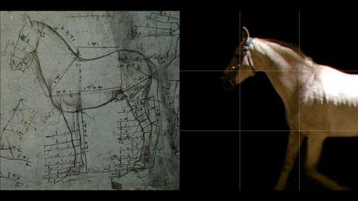 A Milano videoinstallazioni interattive in memoria di Leonardo