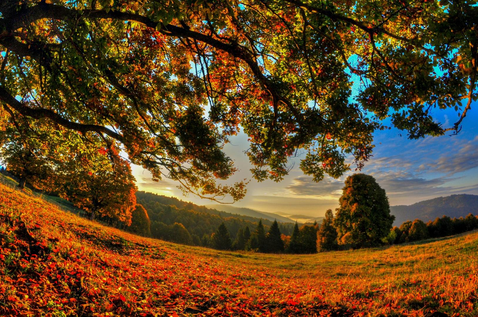 Veneto: Asiago celebra un fantasmagorico autunno
