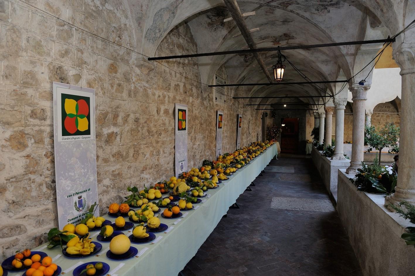Gargnano sul Garda: rendez vous con gli agrumi