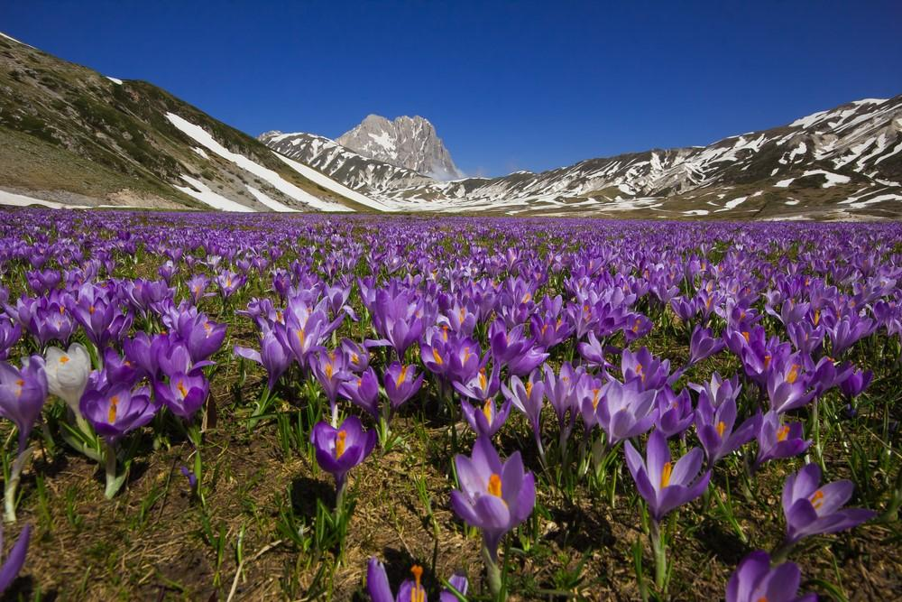 Paese che vai, trekking che trovi