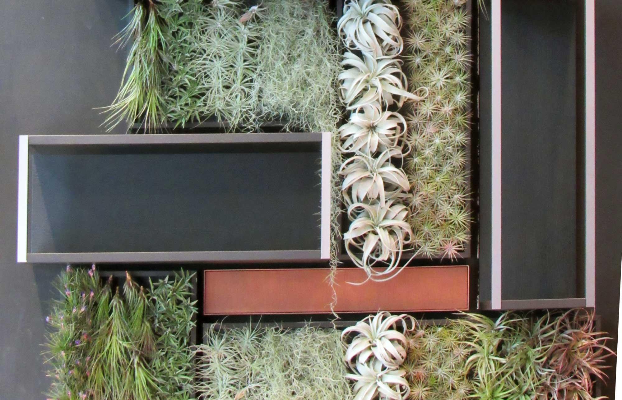 FuoriSalone, le piante vestono la parete di casa