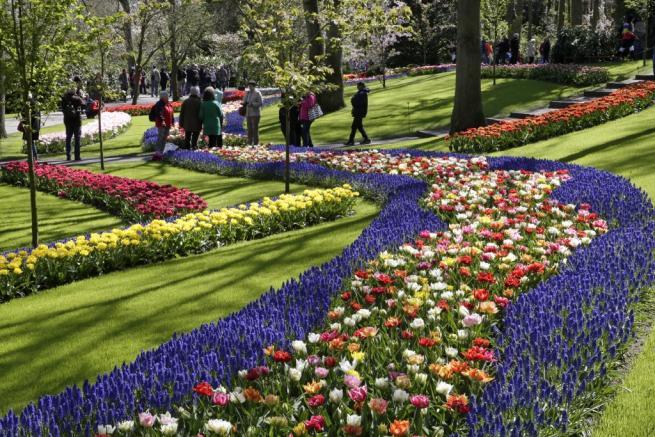 Olanda: i tulipani dei giardini Keukenhof