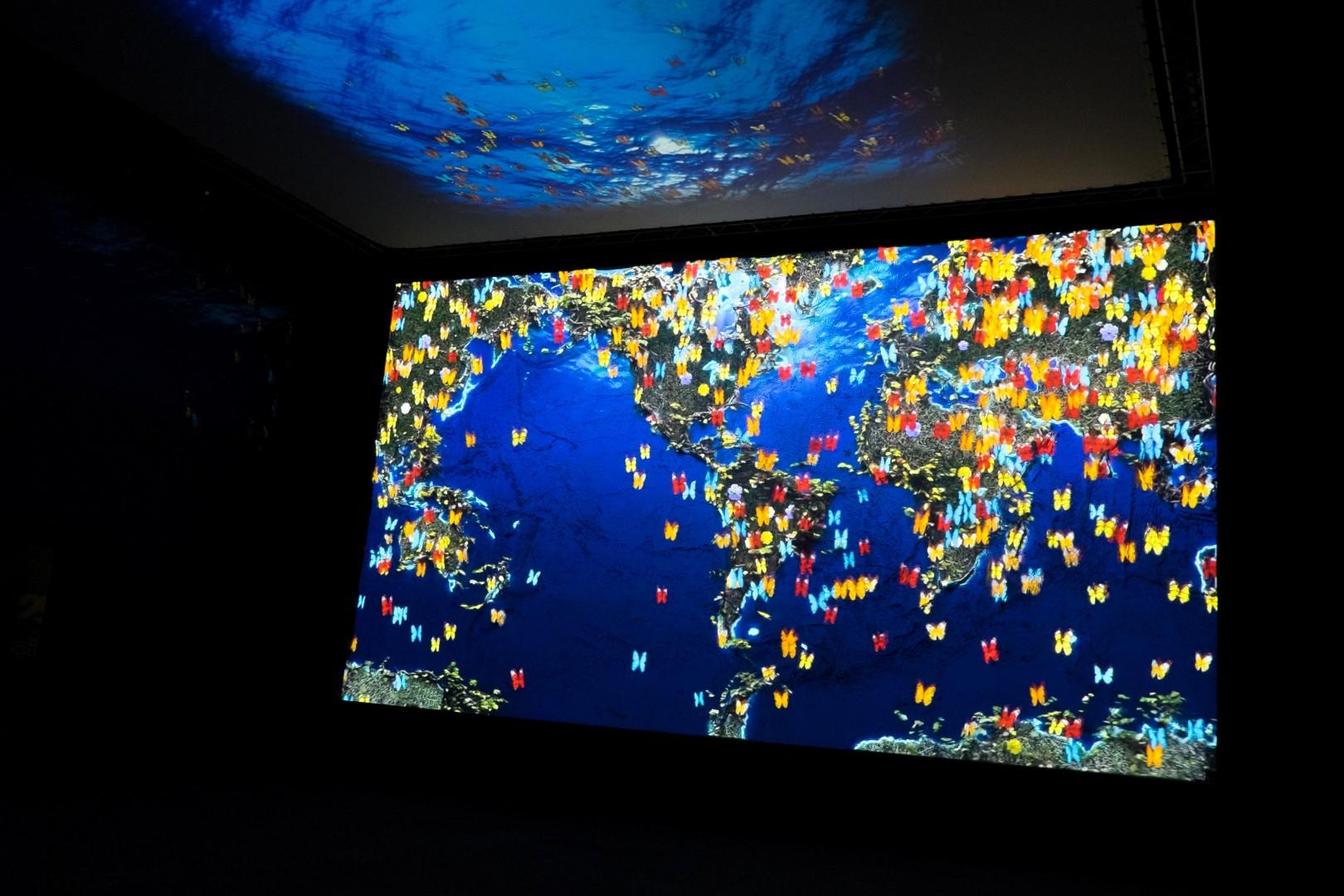 Genova: nuove avventure all Acquario