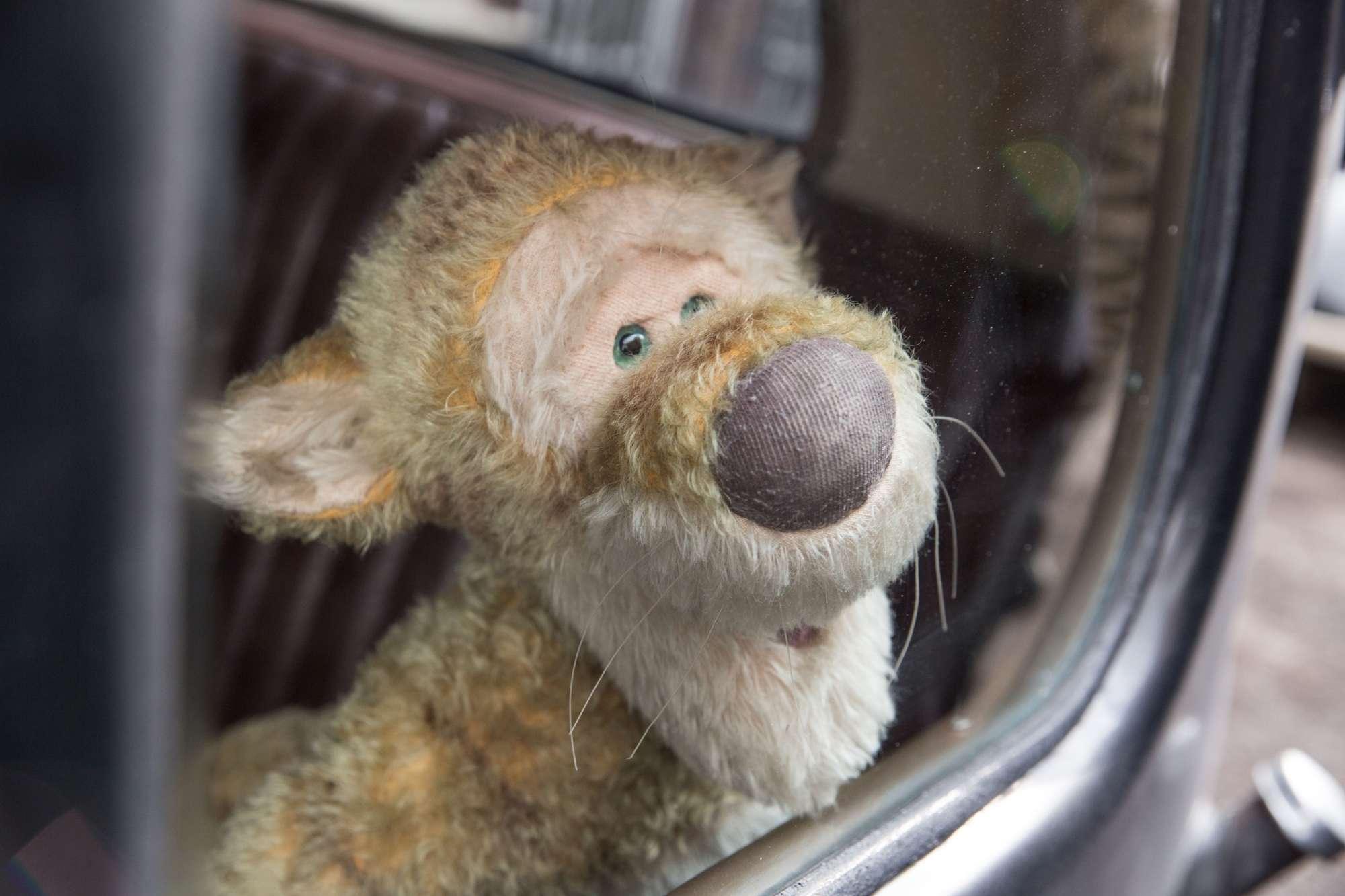 Winnie the Pooh torna al cinema in un live action