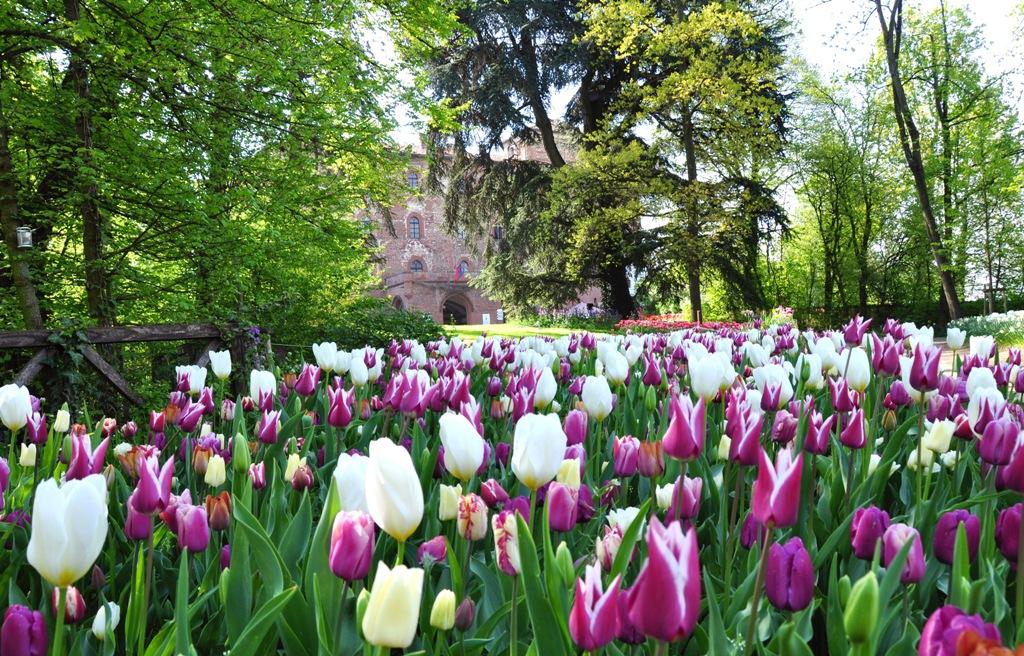 I tulipani da sogno del Castello di Pralormo