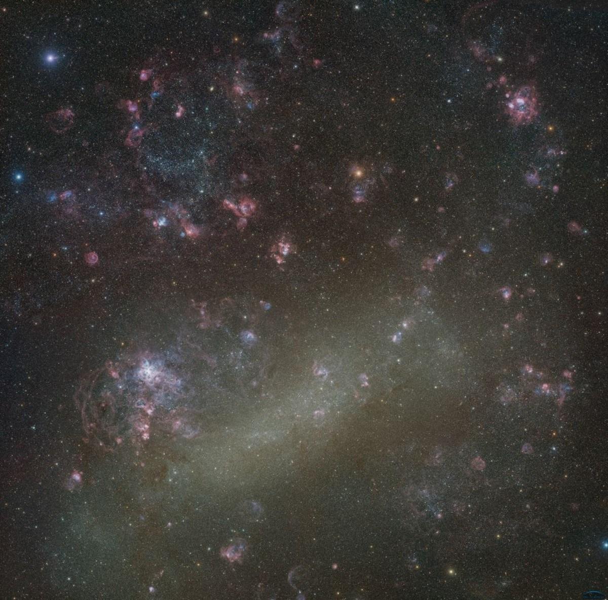 La galassia fotografata da un gruppo di astrofili amatoriali