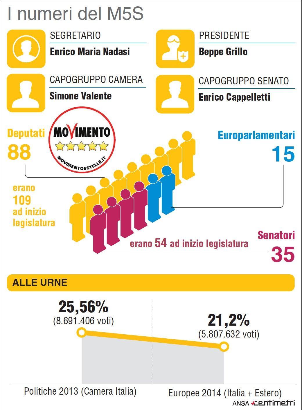 Di Maio candidato M5s, i numeri del Movimento