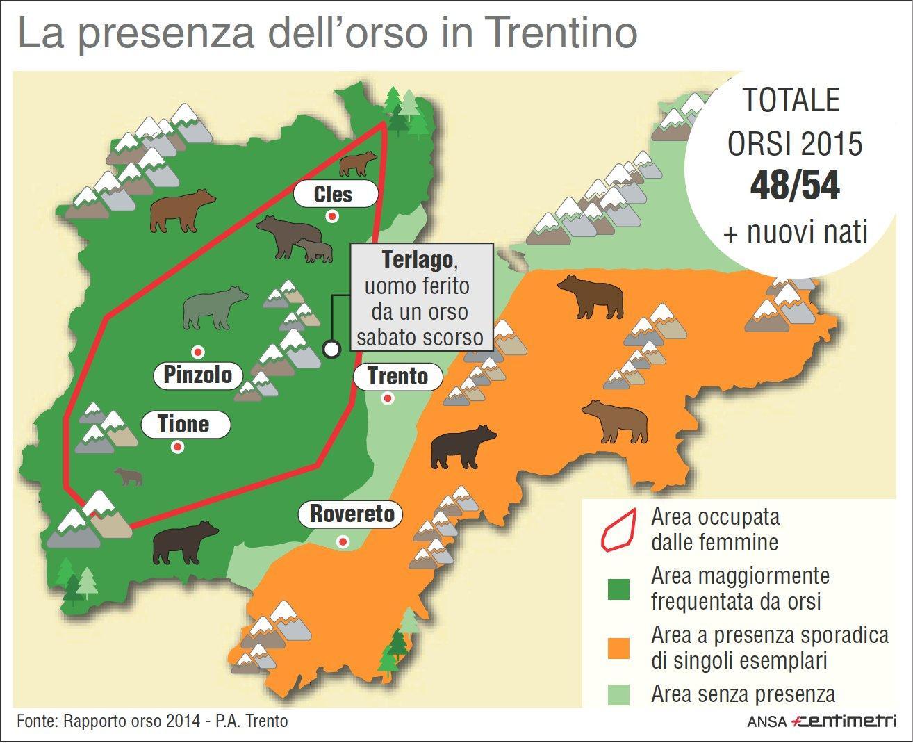 La presenza di orsi in Trentino Alto Adige