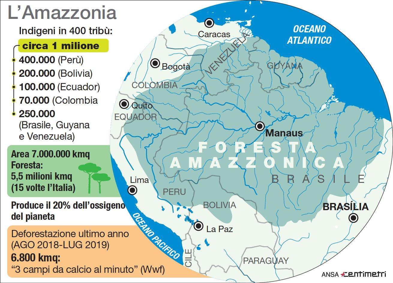 I numeri dell Amazzonia