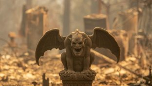 Incendi in California, i morti salgono a 44