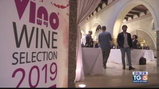 Gusto DiVino: Wine Selection 2019
