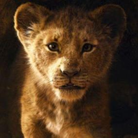 Il Re Leone , ecco il primo trailer del live action